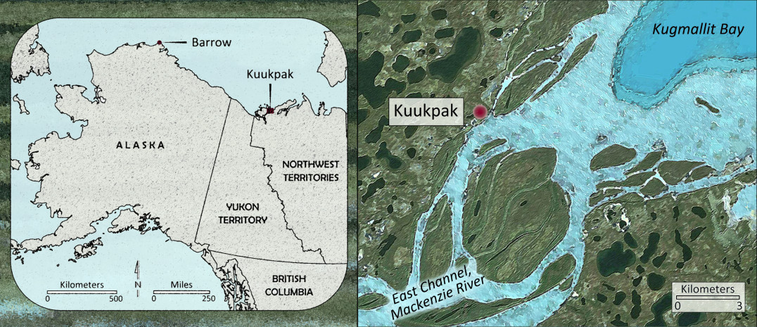 The Mackenzie Delta region, where the longest river system in Canada empties into the Arctic Ocean, provided the people of Kuukpak with bountiful fishing, hunting, and whaling grounds.