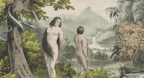 Difficult childbirth and helpless babies could be Eve's fault—or just evolution's.