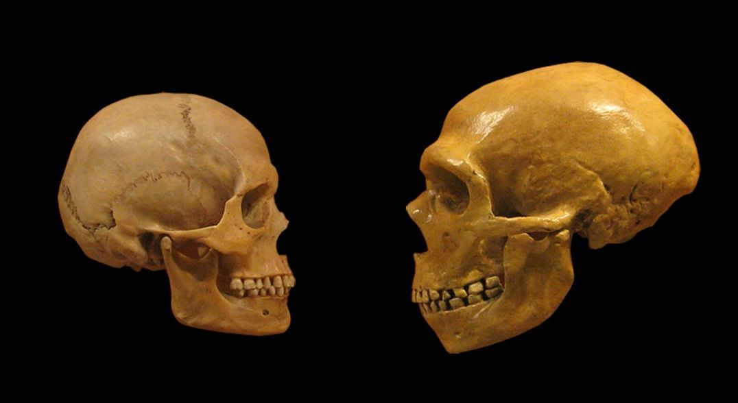 How Climate Change May Have Shaped Human Evolution