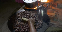 A Maya woman roasts cacao beans grown on her family's farm in southern Belize. The family traditionally drinks cacao unsweetened but flavored with allspice.