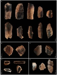 Human fire use - Qesem Cave in Israel, where these charred bits of animal bones were found, is one of the earliest known sites showing somewhat persistent fire usage by humans.