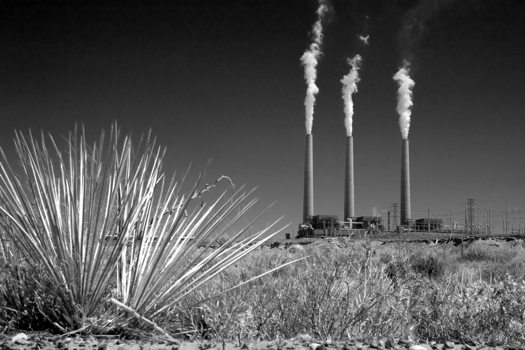 The Navajo Generating Station in Arizona may close, along with the Kayenta Mine, but the many threats to junipers and other plants that Hopis traditionally use will continue.