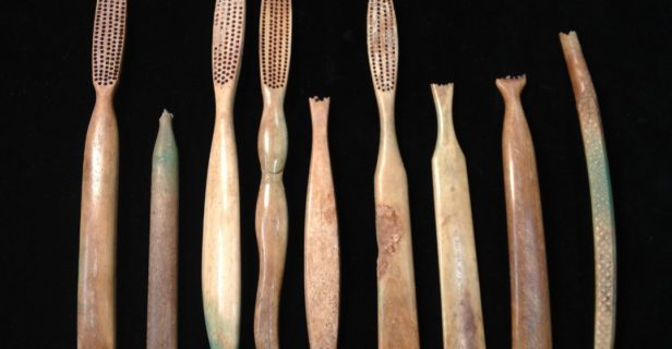 Bone-handled toothbrushes excavated from the privy at 27–29 Endicott Street illustrate the importance of dental hygiene for the women who worked and lived at this brothel.