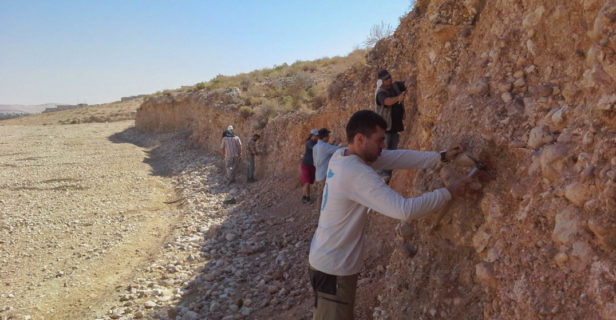 Dispersal - Researchers excavate in Jordan's Zarqa Valley.