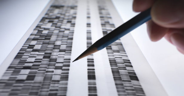 human genome project Neanderthals - Humans have more than 3 billion letter pairs of DNA in their genome, and only about 0.1 percent of that differs between any two people.