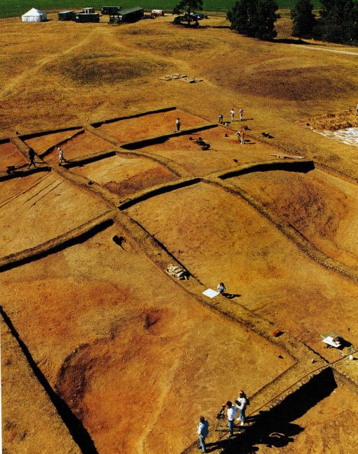story Sutton Hoo - Further excavations after the original 1939 campaign covered many more of the area's burial mounds.
